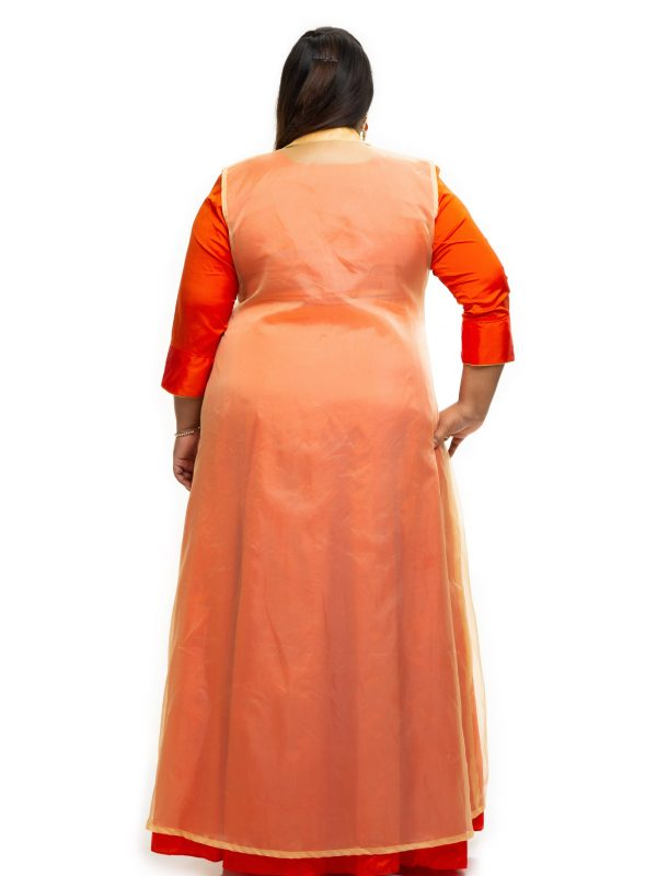 Orange with gold Organza plus size dress Back